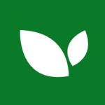 Ramo Verde